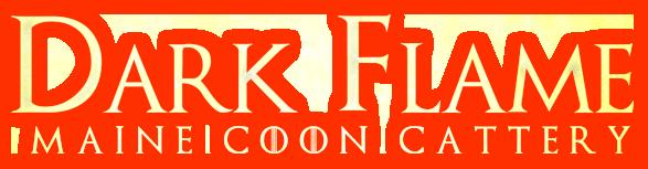 Питомник мейн-кунов Dark Flame